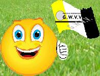 Smiley gwvv vlag